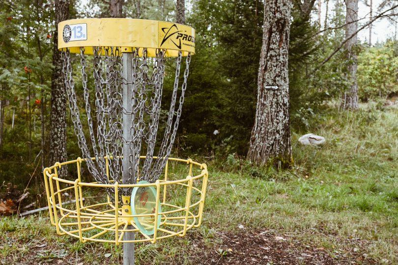 Frisbeegolfkorg i skogen